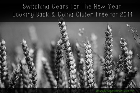 Switching Gears For The New Year - naturallylivinginthemaritimes.com